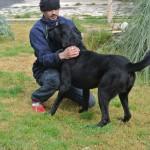 Maylik (4)